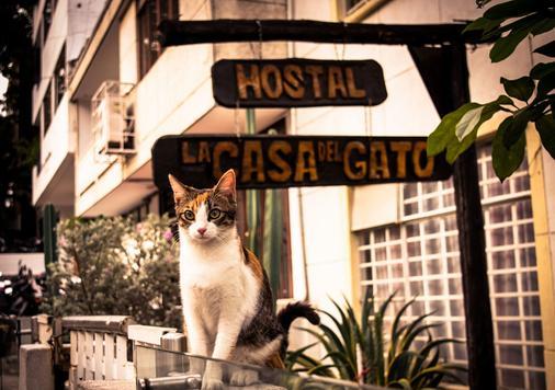 Hostal Casa del Gato - Santiago de Cali - Vista del exterior