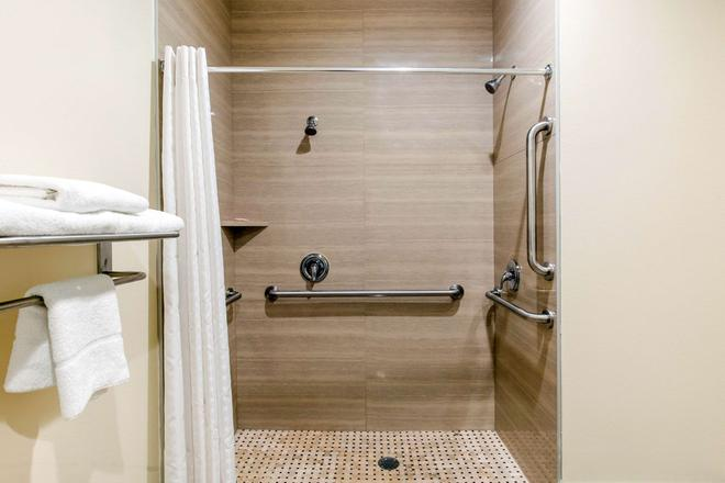 Econo Lodge Inn and Suites Houston Willowbrook - Houston - Baño