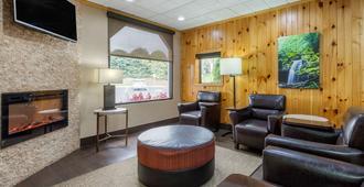 Comfort Inn Asheville Airport - Fletcher - Lounge