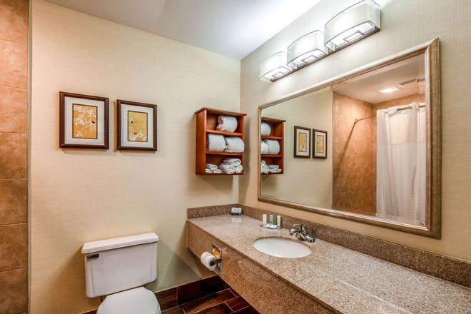 Quality Inn and Suites Muskegon - Muskegon - Bathroom