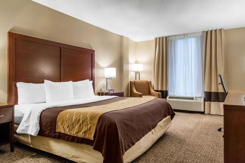 Comfort Inn Msp Airport - Mall Of America - Bloomington - Bedroom