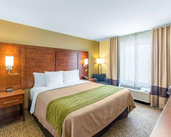 Comfort Inn Wichita Falls North - Wichita Falls - Ložnice