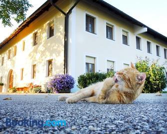 Bauernhofpension Herzog zu Laah - Ansfelden - Building
