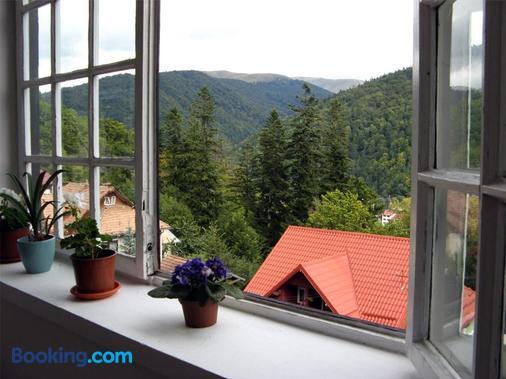 Pensiunea Vila Gabriel - Sinaia - Balcony