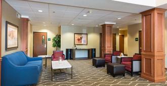 Comfort Suites Springfield Riverbend Medical - Springfield - Lounge
