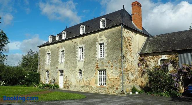 Les Grands Aulnais - Cossé-le-Vivien - Building
