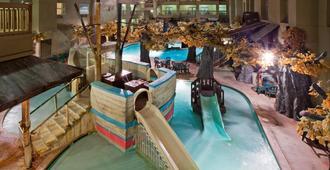 Holiday Inn Hotel & Suites Madison West - Madison - Pool