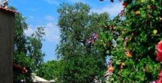 Villaggio Turistico Costa Alta - Piano di Sorrento - Außenansicht