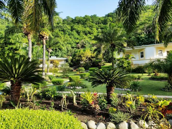 Blue Horizons Garden Resort - Saint George's - Vista del exterior