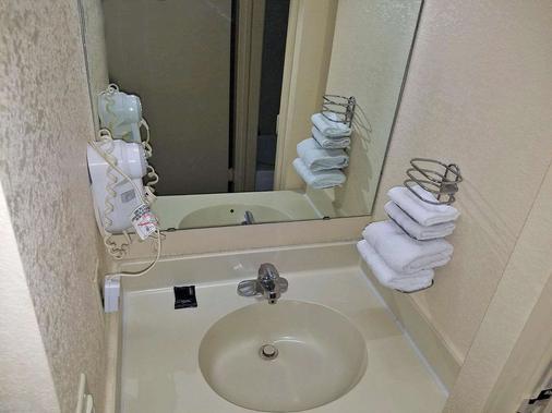 Americas Best Value Inn Evansville - Evansville - Bathroom