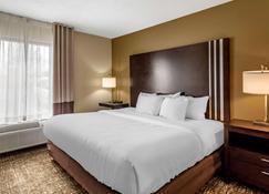 Comfort Inn Paducah I-24 - Paducah - Bedroom