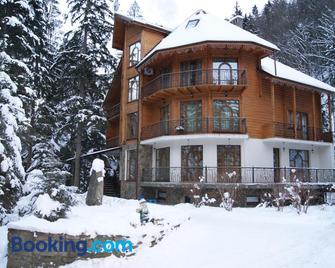 Hotel Dykyi Med - Yaremche - Gebouw