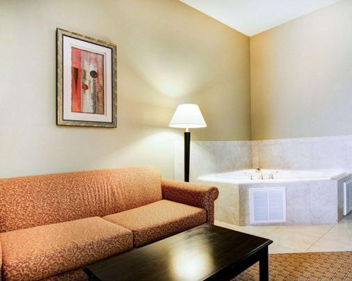 Comfort Suites Fort Stockton - Fort Stockton - Kylpyhuone