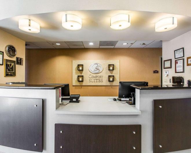 Comfort Suites Near City of Industry - Los Angeles - La Puente - Rezeption