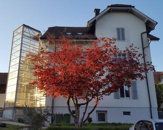 Casa Carmela Apartment - Золотурн - Будівля