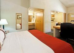 Holiday Inn Hotel & Suites Chihuahua - Chihuahua - Habitación