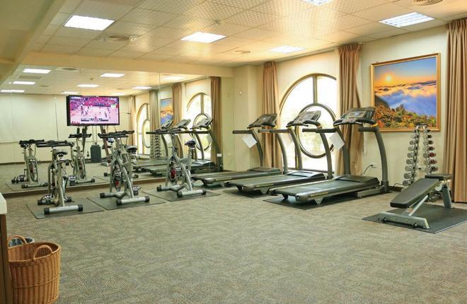 皇品國際酒店 - 嘉義市 - 健身房