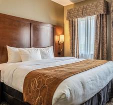 Comfort Suites Near Texas State University