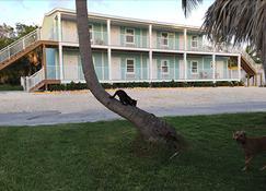 Bonefish Bay Motel - Marathon - Building
