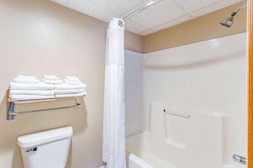 AmericInn by Wyndham Des Moines Airport - Des Moines - Bathroom