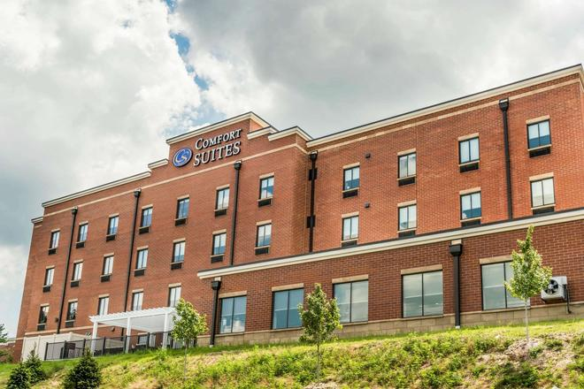 Comfort Suites Florence-Cincinnati South - Florence - Rakennus