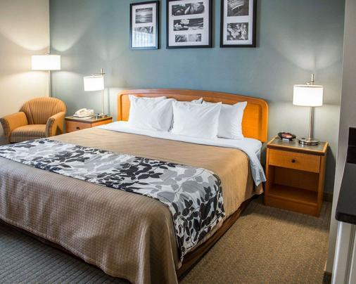 Sleep Inn and Suites Davenport - Quad Cities - Davenport - Bedroom