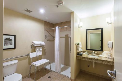 Comfort Suites East - Lincoln - Bathroom