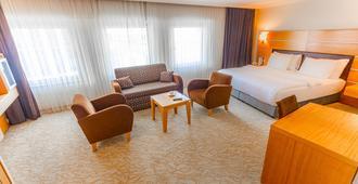 安卡拉廣場酒店 - 安卡拉 - 安卡拉 - 臥室