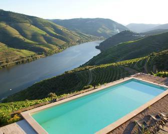Quinta da Veiga - Sabrosa - Pool