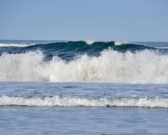Best Western Plus Agate Beach Inn - Newport - Toà nhà