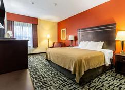 Quality Inn Texas City I-45 - Texas City - Bedroom