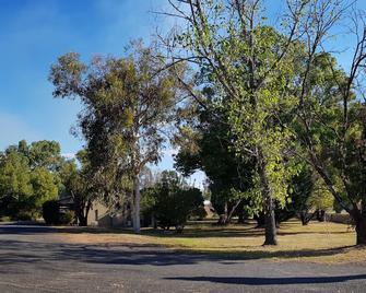 Amber Court Motor Inn - Coonabarabran - Outdoors view