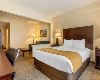 Comfort Suites Gastonia - Charlotte - Gastonia - Bedroom