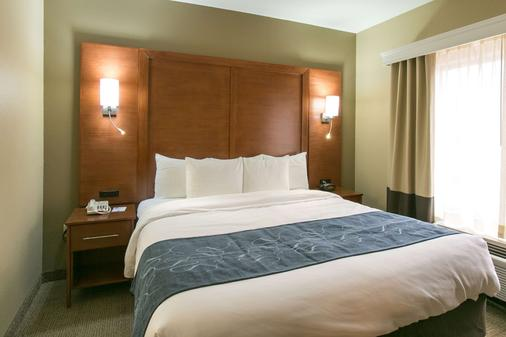 Comfort Suites Austin Nw Lakeline - Austin - Bedroom