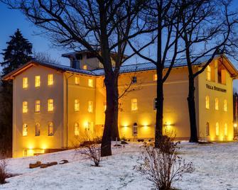 Villa Sternkopf - Breitenbrunn (Saxony) - Building
