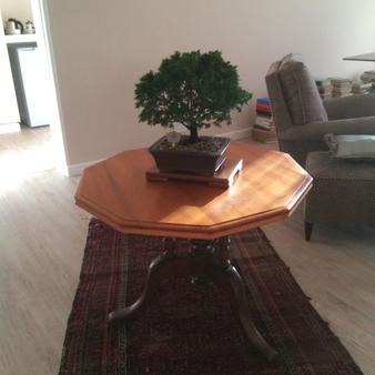 Acacia House - Cape Town - Living room