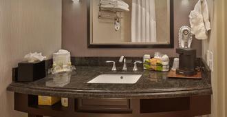 Holiday Inn Jacksonville E 295 Baymeadows - Jacksonville - Baño