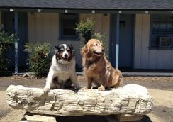 Farmhouse Motel - Paso Robles - Pet friendly