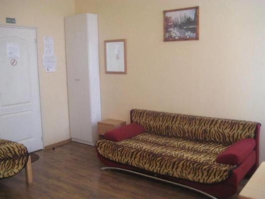 Tiger hostel - Riga - Huiskamer
