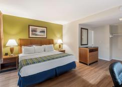 Americas Best Value Inn Painted Post - Painted Post - Bedroom