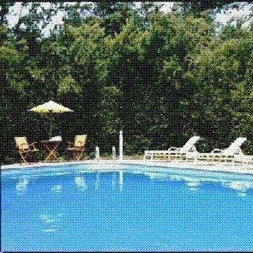阿西羅瑪會務酒店 - 帕西非克葛洛夫 - 太平洋叢林 - 游泳池