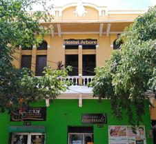 Hostel Arbore