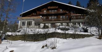 Youth Hostel Grindelwald - Grindelwald - Κτίριο