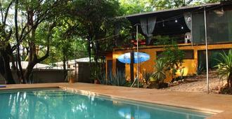 Pura Vida Mini Hostel - Tamarindo - Pool