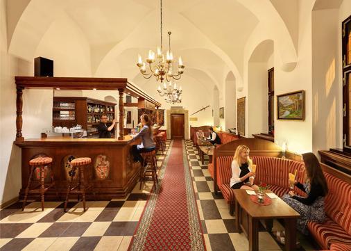 Hotel Ruze - Český Krumlov - Bar