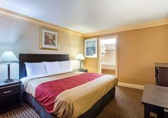 Rodeway Inn and Suites Birmingham I-59 exit 134 - Birmingham - Phòng ngủ