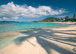 Sapphire Beach Resort - Saint Thomas Island - Beach