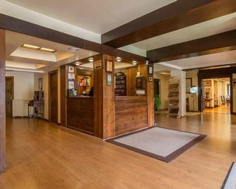 Hotel Candanchu - Canfranc - Recepce