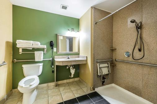Sleep Inn & Suites University/Shands - Gainesville - Bathroom