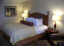 Norfolk Country Inn & Suites - Norfolk - Bedroom